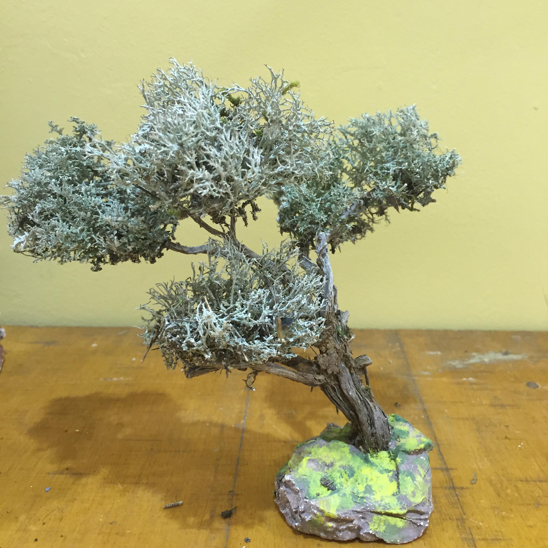 Santi belli arbre de provence santons et d coration de - Arbre provencal ...